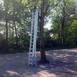 Ladder - 10m
